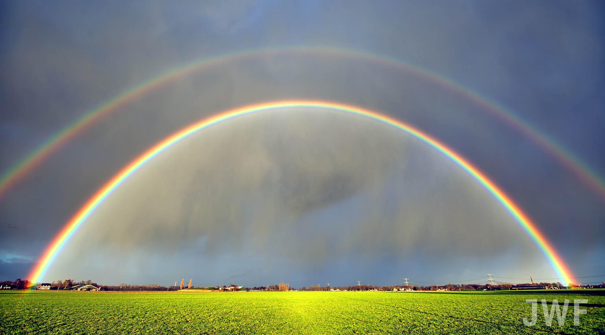 Regenboog, Den Hout, 2017